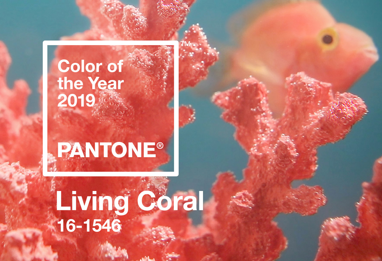 Pantone revela a cor de 2019: Living Coral
